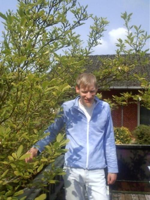 Die große Terrasse mit dem Magnolienbaum